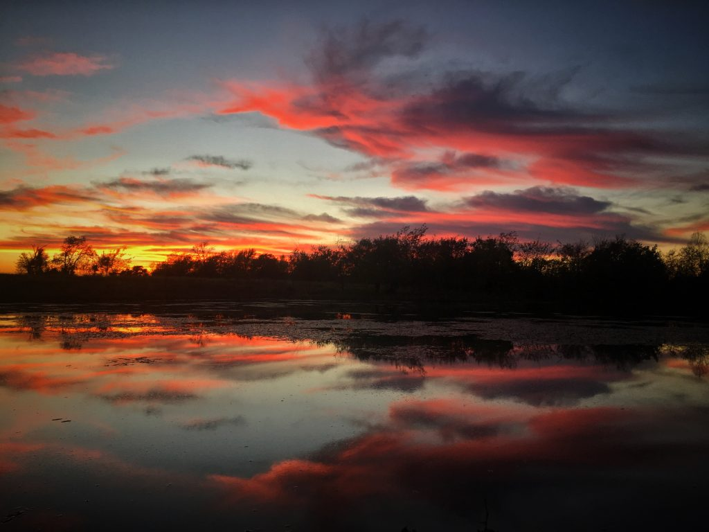 Yellow and pink sunset over pond at Sneed prairie